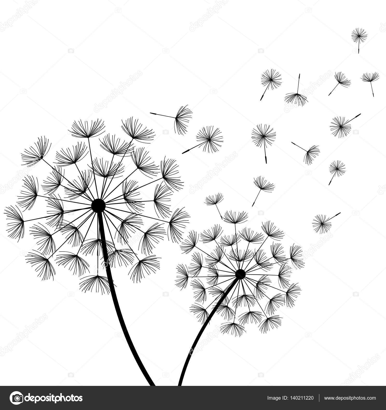 Black And White Dot Wallpaper White Background With Stylized Black Dandelions Stock