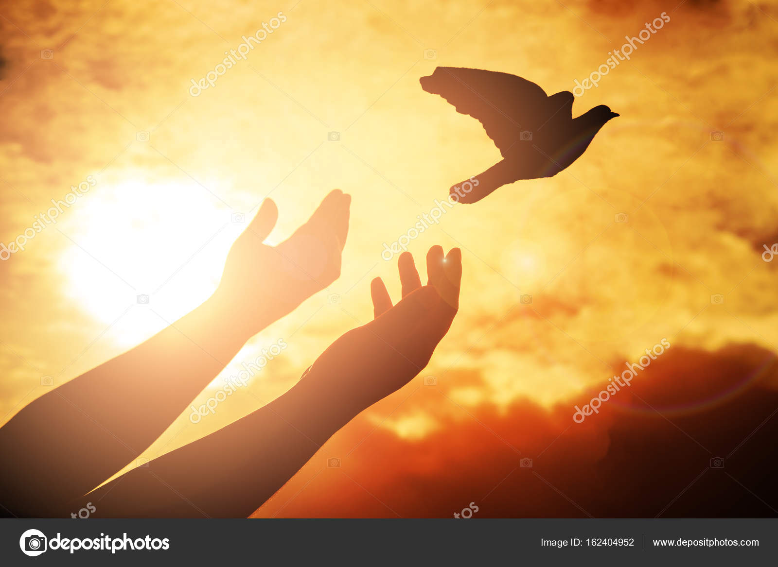 Free Photography Stock Man Praying And Free Bird Enjoying Nature On Sunset Background