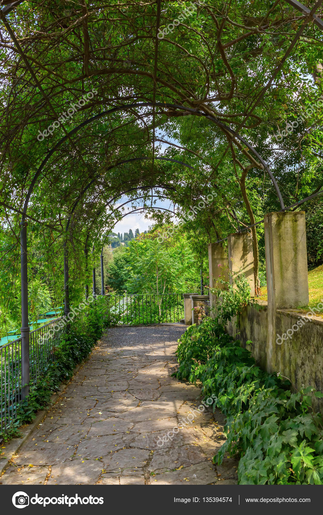 Giardino Italian Tree Tunnel In The Giardino Bardini Florence Italy Stock