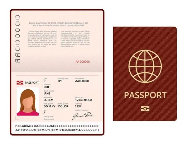 Vector Blank open passport template International passport with - passport template