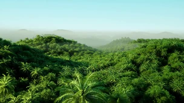 Mountain, field landscape with Palm trees Jungle Realistic 4k