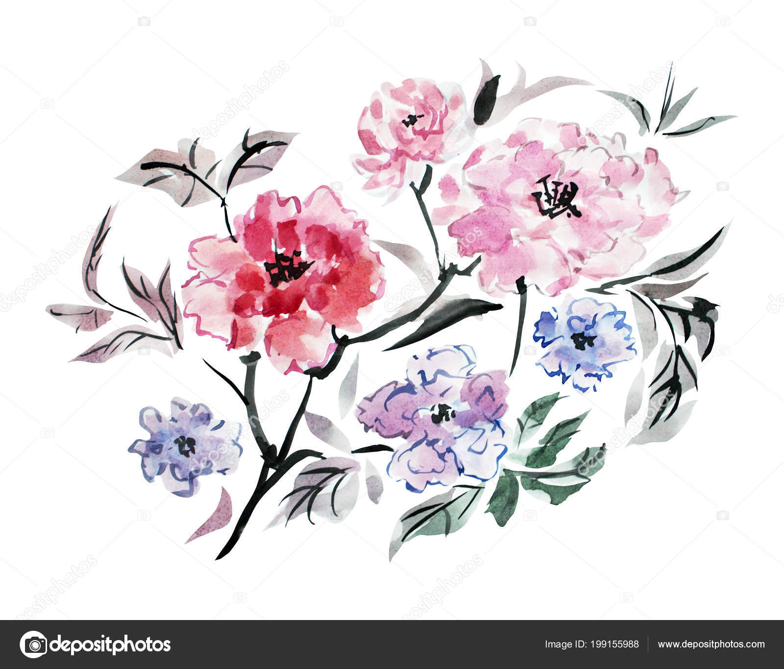 Pfingstrosen Clipart Dekorative Aquarell Pfingstrose Blumen Clipart Design