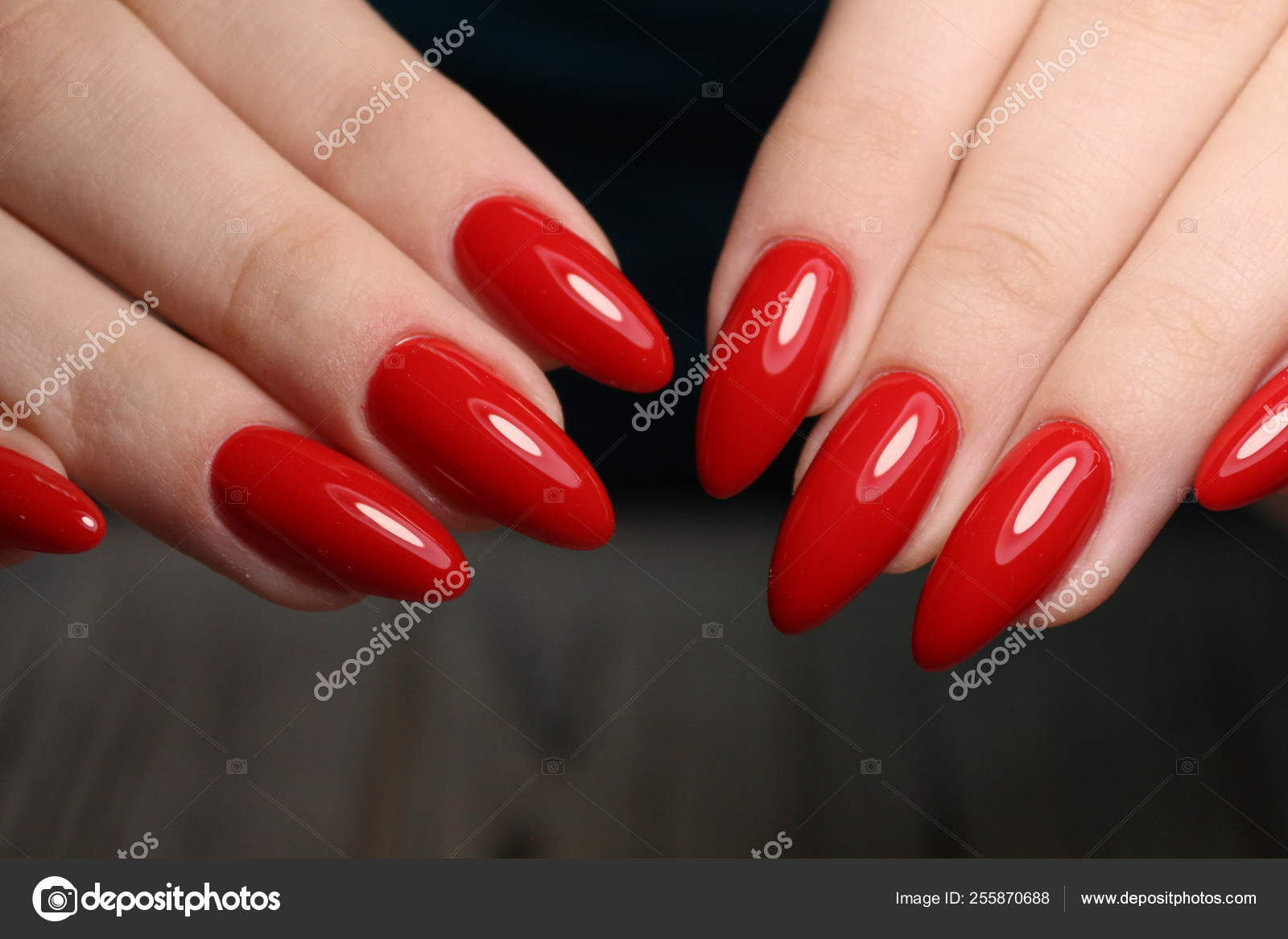 Unhas Manicure Prego Design De Arte Polonês Stock Photo Smirmaxstock 255870688