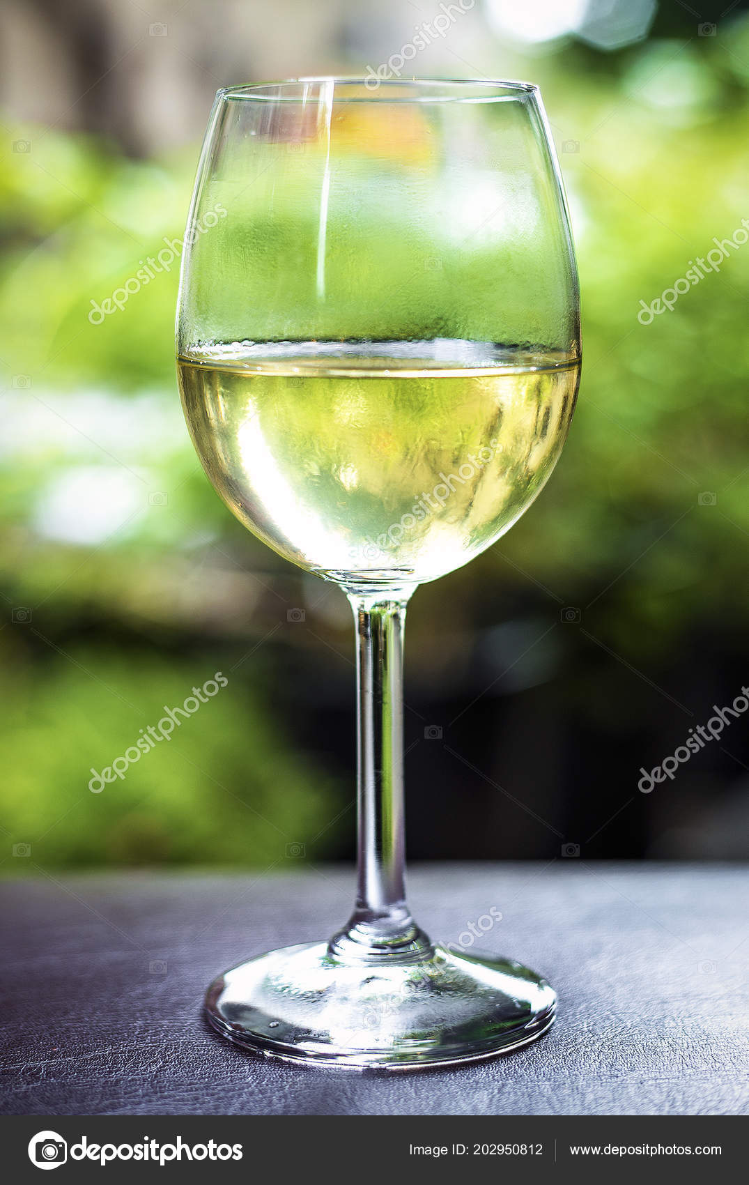 Chardonnay Wine Glass Glass Organic White Chardonnay Wine Garden France Stock Photo