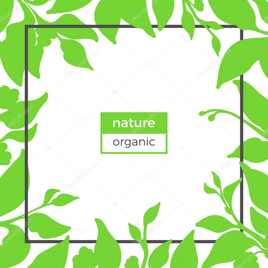 Spring Template With Green Branch Of Tea Bush Leaf And Natural Flower Realistic Organic Product Silhouette Organic Shape Botanical Illustration Geometric Frame Vector Design On White Background Text Premium Vector In