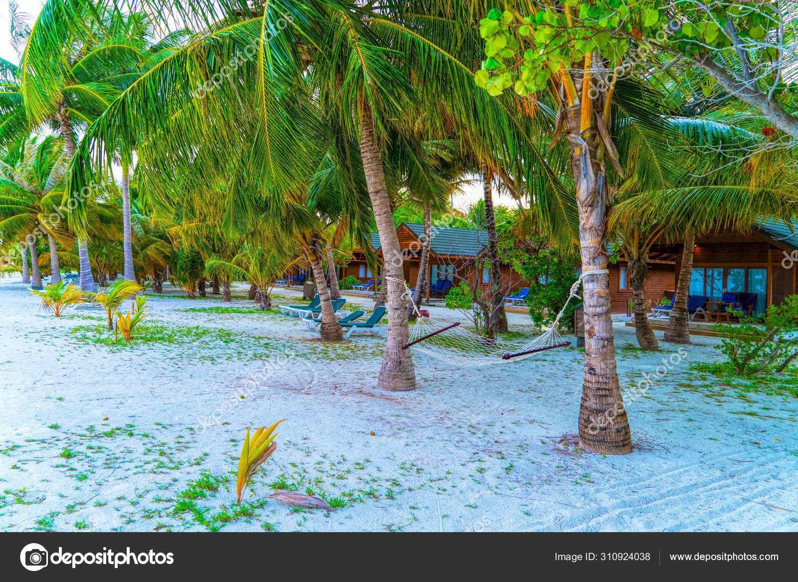 Tropical Bungalow On The Amazing Beach With A Palm Tree Stock Photo Image By Lotosfoto1 310924038
