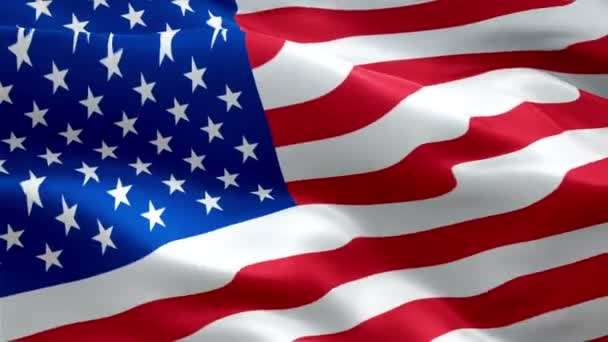 Flag Video Waving Wind Realistic United States Flag Background Usa