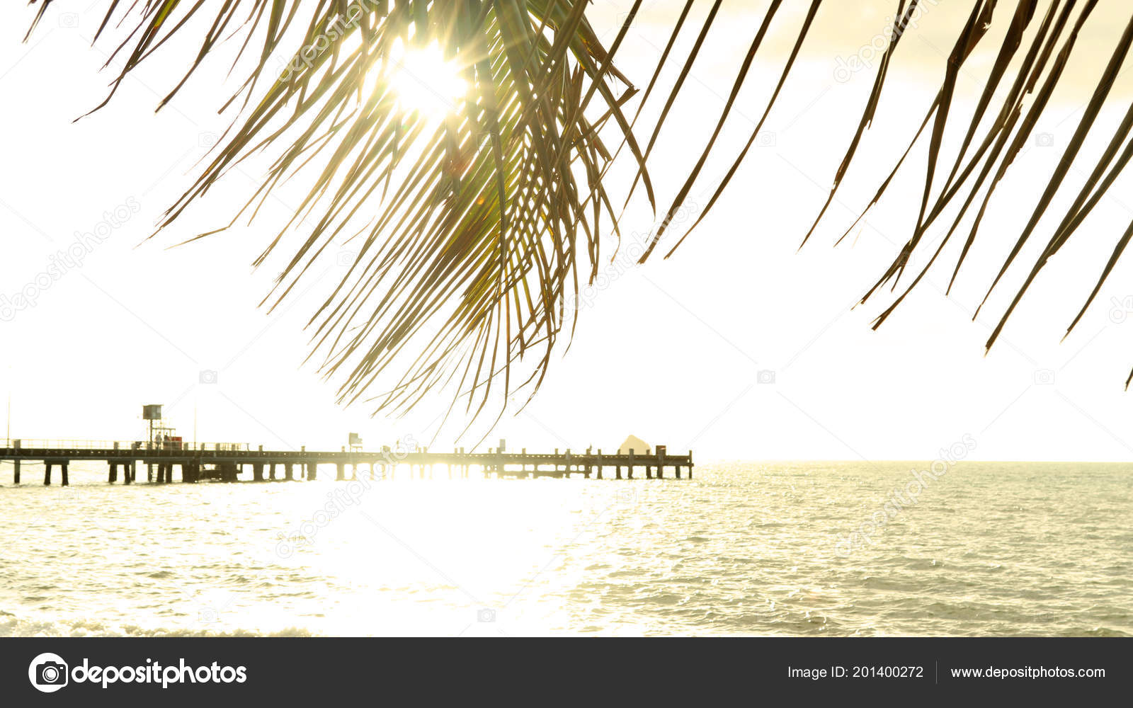 North Queensland Holiday Packages Golden Morning Sunrise Palm Cove Far North Queensland Palm Cove