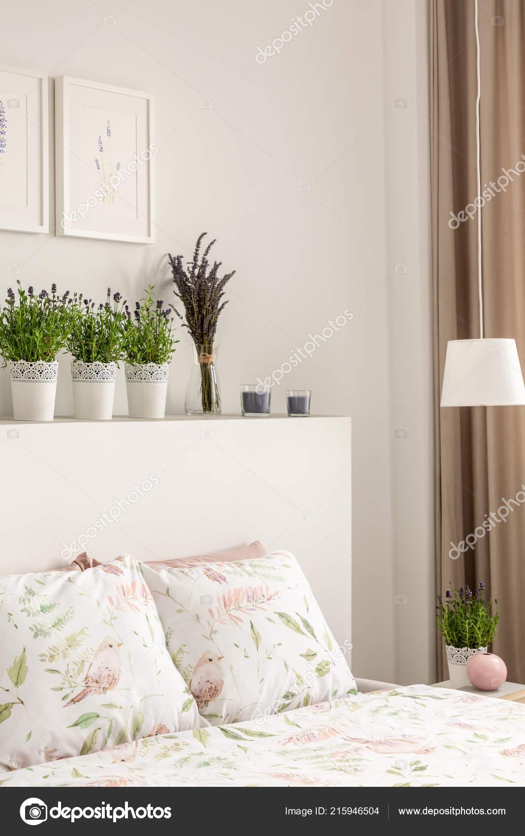 Schlafzimmer Pflanzen Lavendel   Lavendel Duengen
