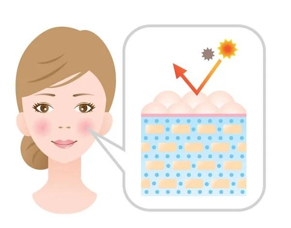Supple skin Stock Vectors, Royalty Free Supple skin Illustrations