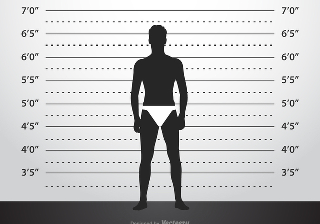 Mugshot Background Template Free Vector Download 362877 CannyPic