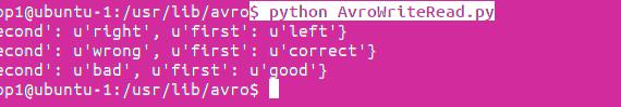 Python Avro run