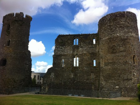 Ferns Castle History
