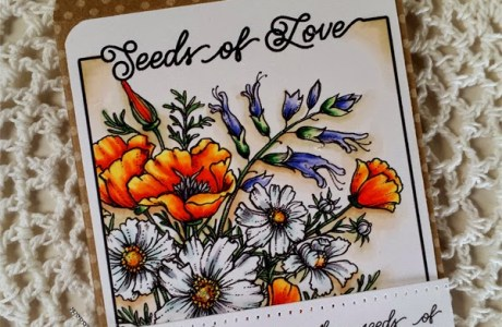 Freebies: Seed Pack Card