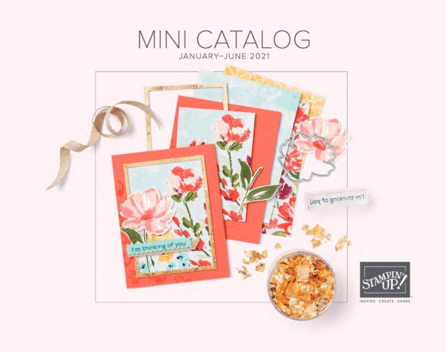 Mini Catalog Products