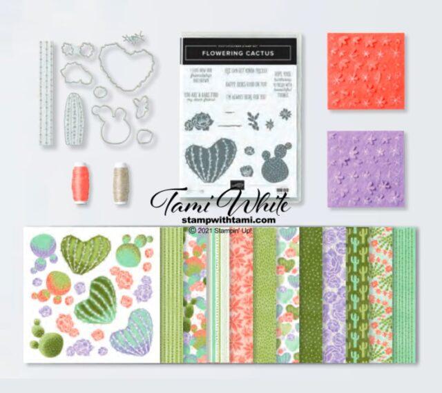 Flowering Cactus Kits