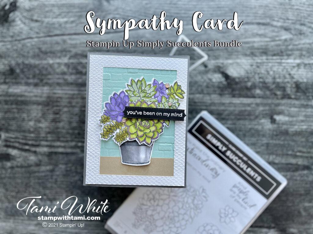 Simply Succulent Techniques photos