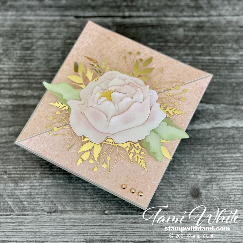 Twist Cards & Boxes