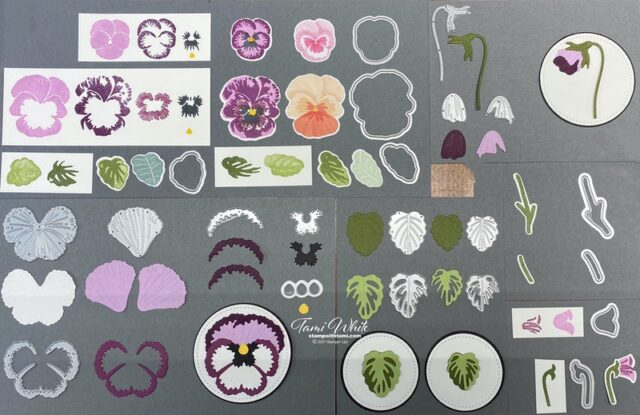 Pansy Petals Suite collection