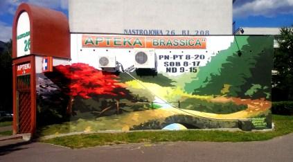 Mural Apteki Brassica Łódź