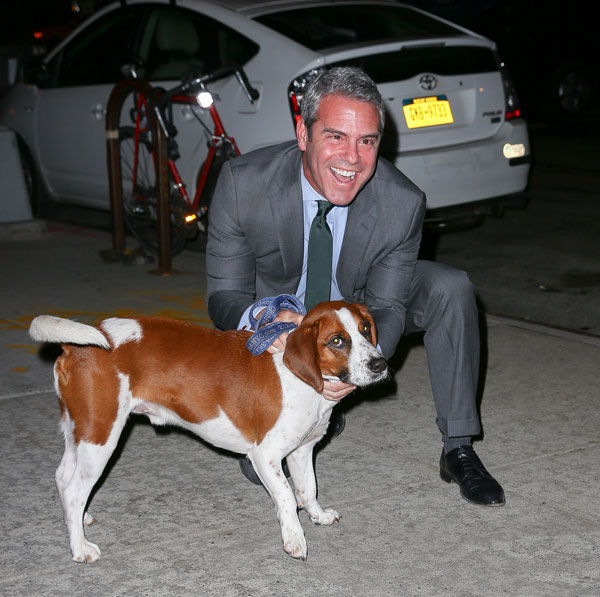 Andy Cohen reveals he uses the dating app Tinder to find love | Daily ...