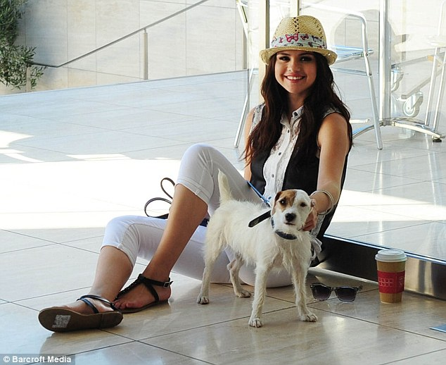 Cute Dog Christmas Pics Wallpaper Selena Gomez Is A Dog Lover She Has 6 Of Them