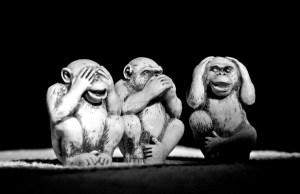 Entreprise sociale – n'attendez pas tout du collaboratif.