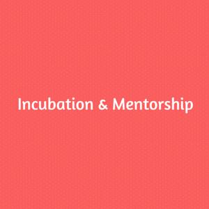 Incubation & Mentorship