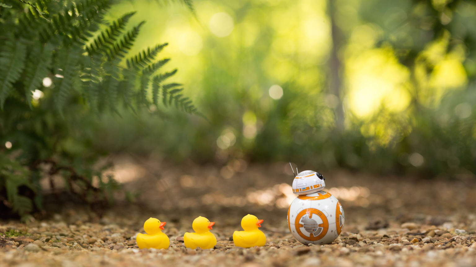 Lucky Star Cute Wallpaper A Day In The Life Of Sphero S Bb 8 Starwars Com