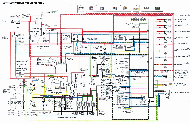 1997 Yamaha Grizzly Wiring Diagram - Wiring Diagram Go stamp-gradient -  stamp-gradient.reginaviarum.it | 1997 Yamaha Wiring Diagram |  | Regina Viarum