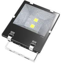 LED-schijnwerper TG-100 100 Watt - www.ledverlichting ...