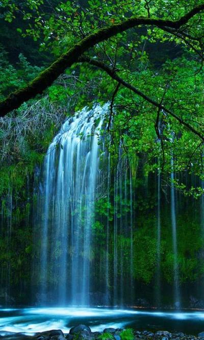 4D Waterfall Live Wallpaper App Ranking and Store Data | App Annie