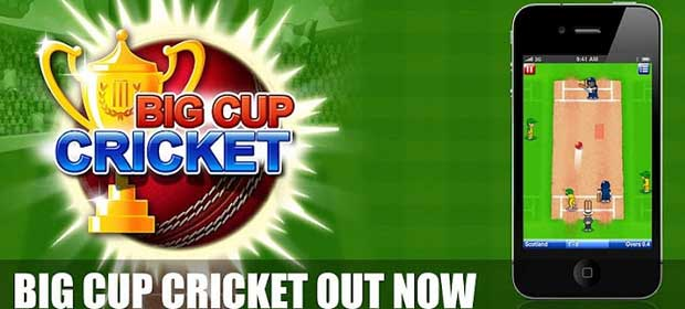 Big Cup Cricket Free