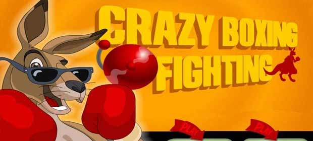 Crazy Boxing Fighting