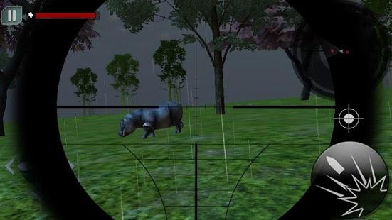 Jungle Animal Fury