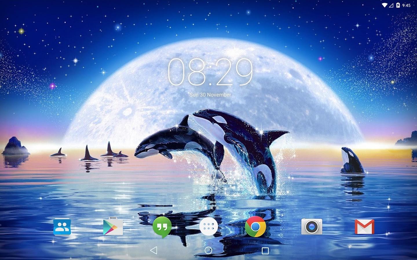 3d Fish Live Wallpaper Apk Ocean Dolphins Live Wallpaper 187 Apk Thing Android Apps