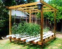 The Basics of Hydroponic Gardening