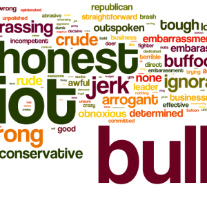 These words represent the sentiments of more than 1,000 Mainers asked in a BDN/Ipsos online survey to describe their impressions of Republican Gov. Paul LePage in one word.