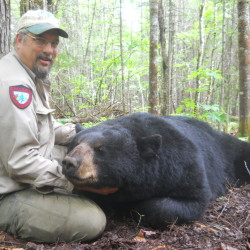"Wildlife biologist Randy Cross poses with ""Dozer,"" a bear that he and his crew captured twice over a 12-day span earlier this year. The captures occurred during mating season, and Dozer lost 34 pounds during that period as he pursued female bears."
