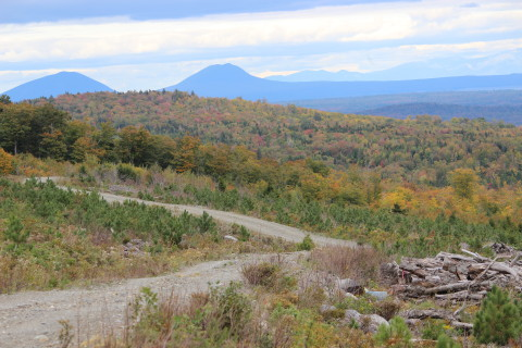 A curving road and magnificent backdrop in the Maine woods near Rockwood.
