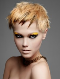 Punk Girl Hair Color Ideas 2012.