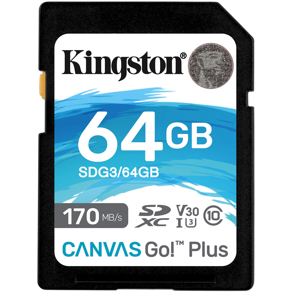 Kingston 256gb Canvas Go Plus Uhs I Sdxc Memory Card Sdg3 256gb