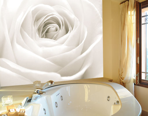 Ebay 3d Wallpaper Photo Photo Wall Mural The White Rose 400x280 Wall Decor