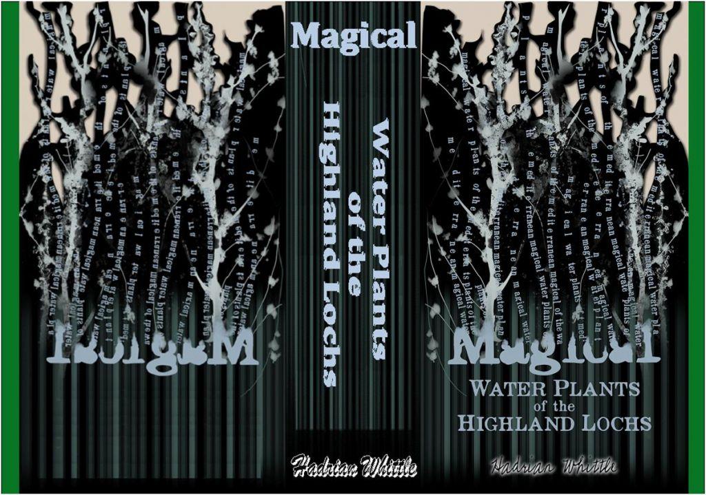 SECRETS_DCFM libros hogwarts Pinterest Harry potter - printable lined paper sample