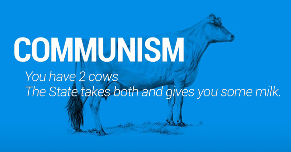 Two Cows Explain Economics Better Than Any Class Bored Panda