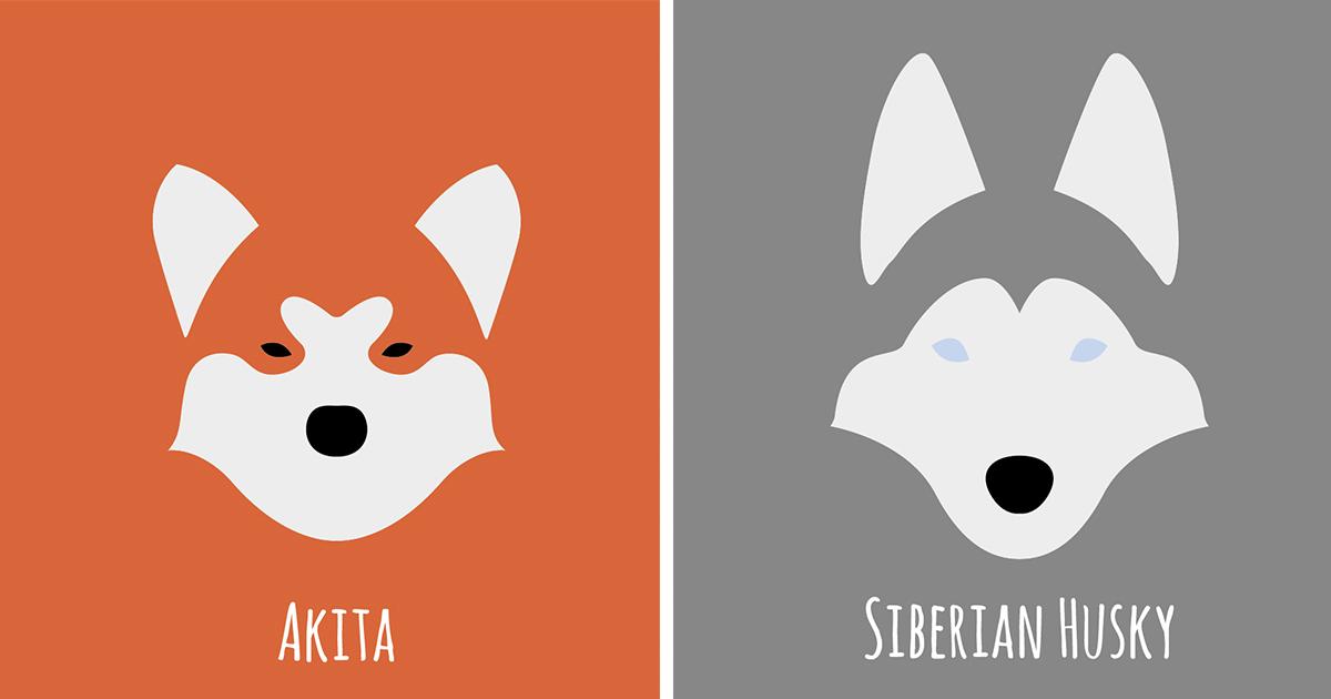 Joker Wallpaper Iphone I Make Minimalist Illustrations Of Various Dog Breeds