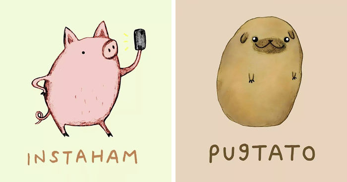 Really Cute Thanksgiving Wallpaper 29 Funny Animal Puns To Make Your Monday Pun Again Bored