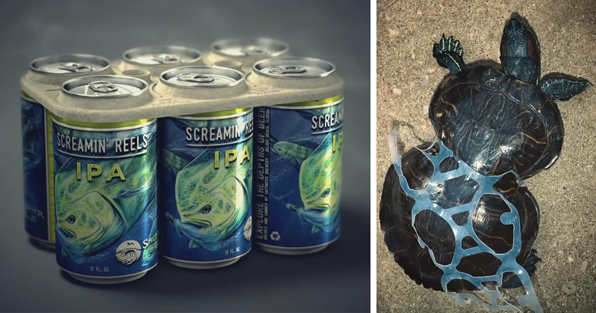 Edible Six Pack Rings Feed Sea Creatures Instead Of