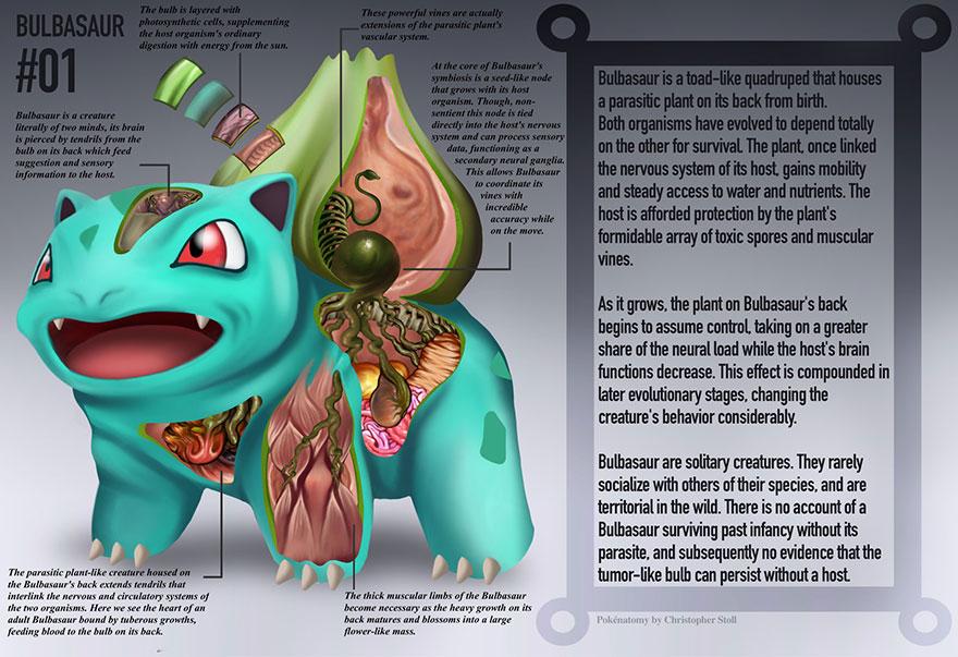 Detailed Illustrations Reveal The Anatomies Of Pokémon Bored Panda