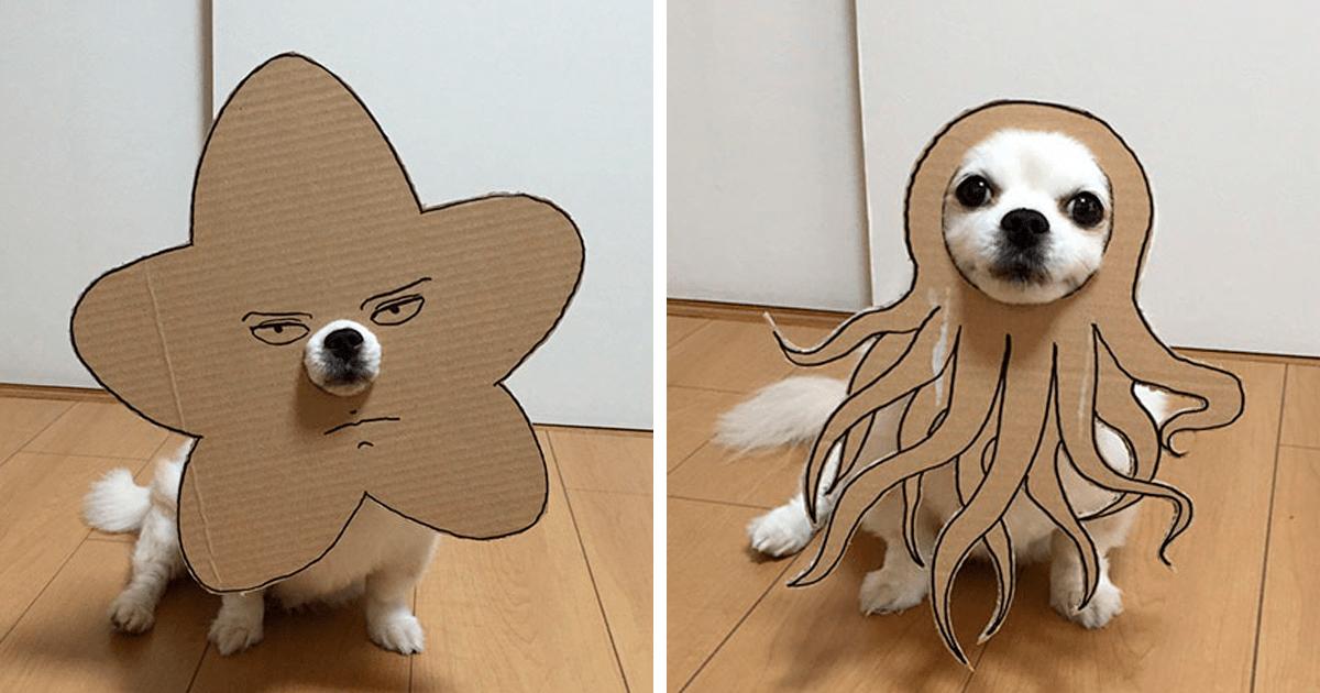 Japanese Woman Creates Hilarious Cardboard Cutouts With